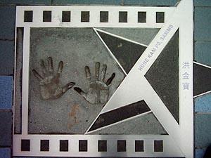 hand11-sammohung.jpg
